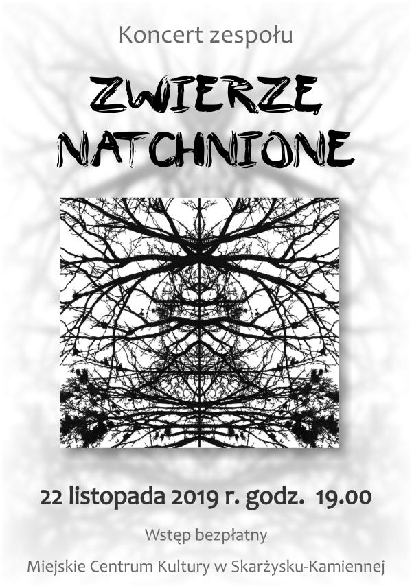koncert zespolu Zwierze Natchnione